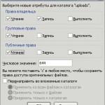 Необходимые меры для повышения безопасности вашего сайта на WordPress