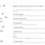 Настройка системы комментирования Disqus: закладка settings