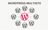 мультисайт wordpress