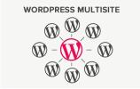 мультисайт wordpress
