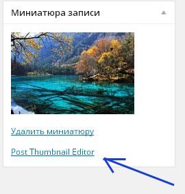 редактор загруженных изображений wordpress