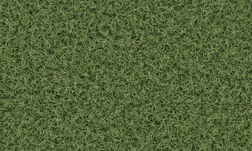 3d-Grass-Texture-with-Seamless-Tiling