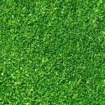 Текстуры травы (бесшовные, скачать бесплатно)