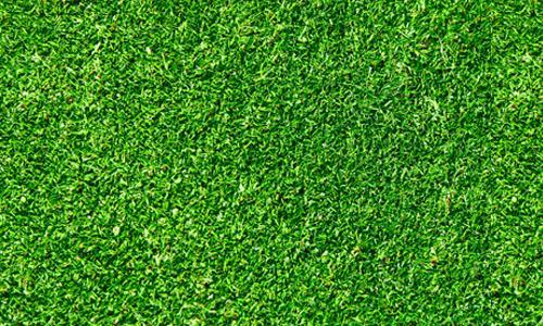 Seamless-Green-Grass-Texture