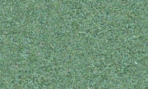 Seamless-grass-texture