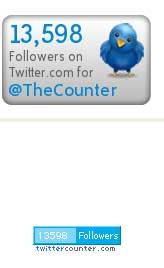 счетчик твиттер последователей на личной страничке
