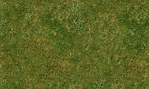 Grassy-Texture-01