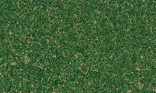 Seamless-grass